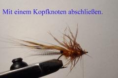 BiboShrimp_knoten