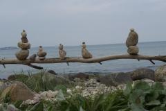 Steinhühner