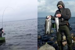 Märzfische
