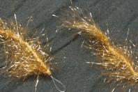 Februar März April Ringelwurm im frühen Frühjahr manchmal die einzige Fliege die fängt